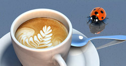 Kaffeepadmaschinen mit leckerer Crema